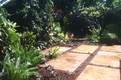 Tropical Garden Design Glossy Foliage Plant Layout