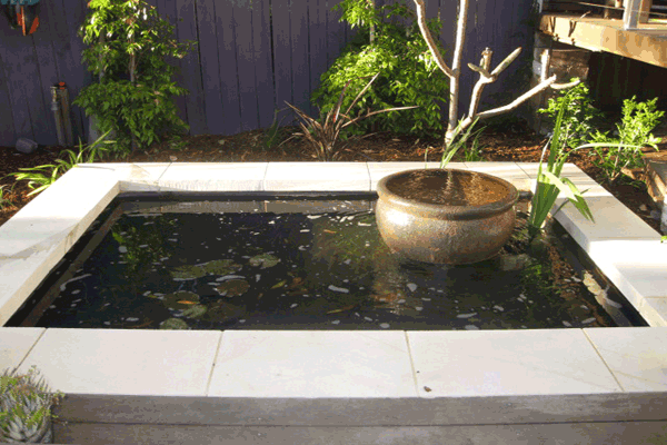 Water Feature Garden Designs
