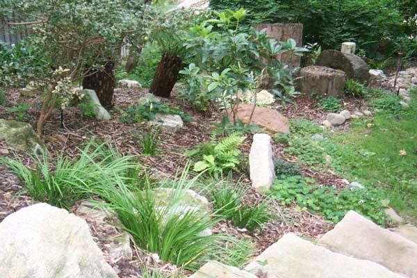 Japanese Landscape Garden Landscape Architect