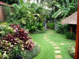 Backyard Idea Tropical Garden Design