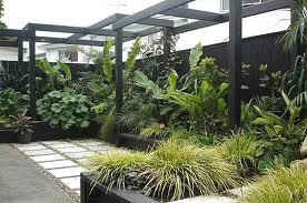 Informal Courtyard Garden. Low Maintenance Garden Plants