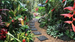 picture garden ideas tropical