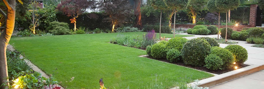 Back Yard Landscape Design 875 x 298