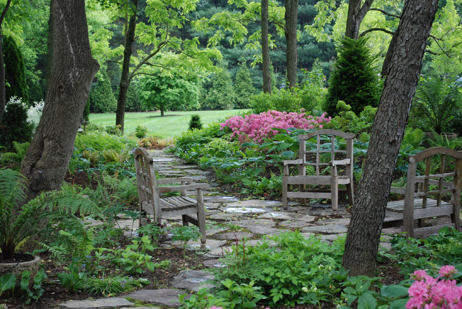 Full shade garden ideas photograph some shade loving p for Sunny landscape designs