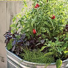 vegetables pots