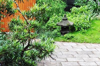 Japanese Courtyard Annandale