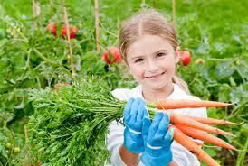 kids vegie garden