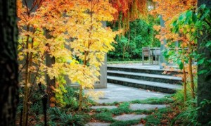 autumn garden design