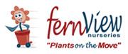 fern view nursery
