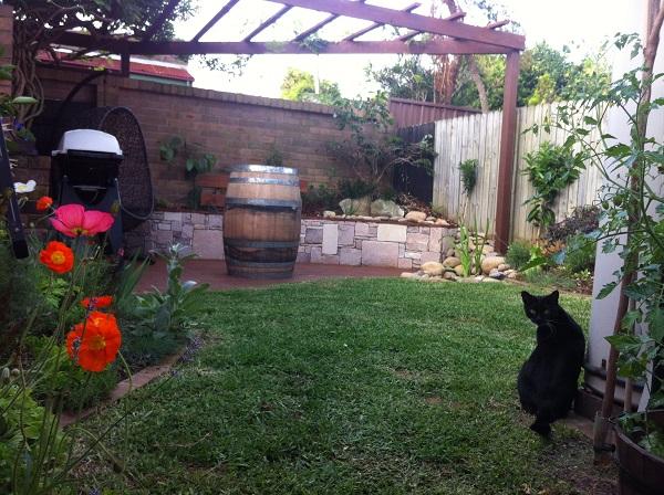Garden Makeover Photos. Garden Renovation Images. Before ...