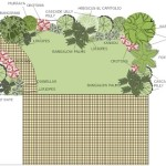tropical garden design plan